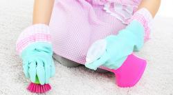 «Ваниш» для чистки ковров: инструкция по применению