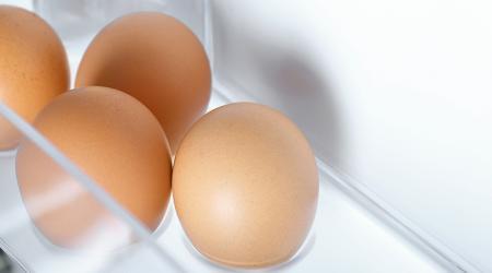 Как и сколько хранить вареные яйца в холодильнике