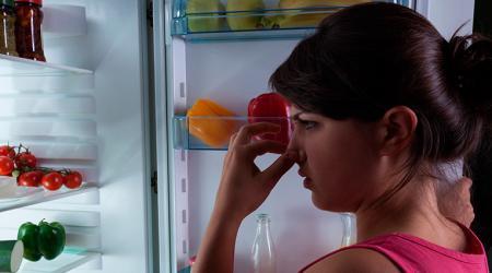 Как эффективно избавиться от запаха в холодильнике