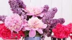 Как подольше сохранить свежие цветы в вазе