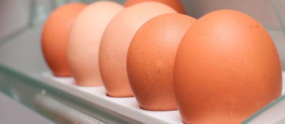 Сроки и рекомендации хранения яиц в холодильнике
