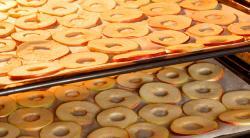 Как сушить яблоки в электрической духовке