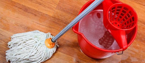 Какую выбрать швабру для мытья пола